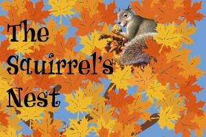 SquirrelNest